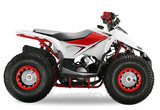Velocifero Mini ATV 110cc Lizzard