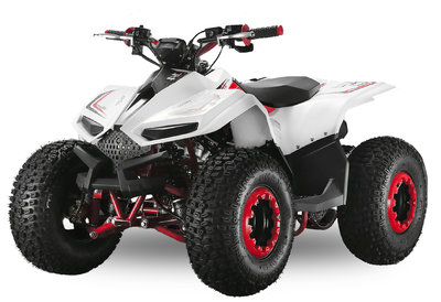 Velocifero Mini ATV | E-start | 110cc